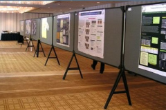 Poster session before opening